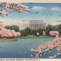 http://www.lbjf.org/txt/pp/ctjlbj/7177990-pp-ctjandlbj-lbj-postcard-10-24-34.pdf